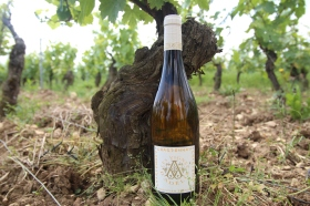Bouteille_Chardonnay